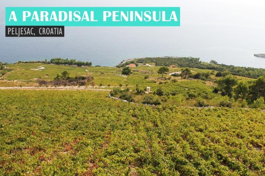 A Paradisal Peninsula: Pelješac,Croatia